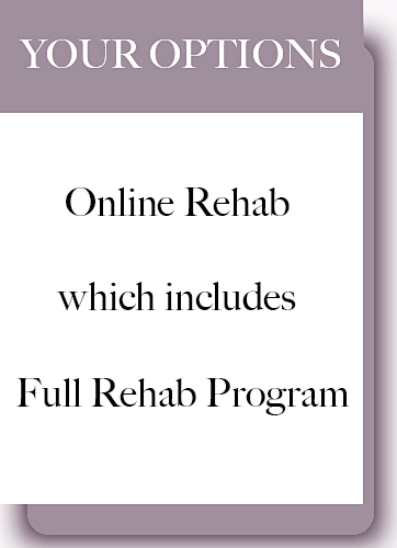 Twelve step online rehab